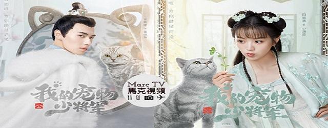 Be My Cat (2021)